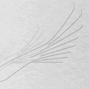 Frame of motion design video